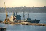 Navio de apoio logistico neo-zelandês